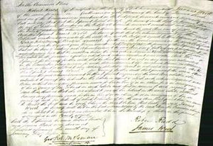 Court of Common Pleas - Ann Rowntree-Original Ancestry