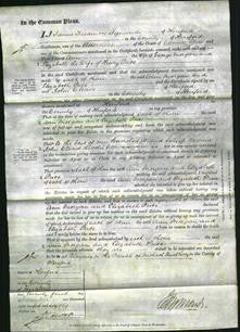 Court of Common Pleas - Ann Morgan and Elizabeth Price-Original Ancestry