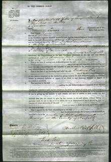 Court of Common Pleas - Emma Mary Stimpson-Original Ancestry