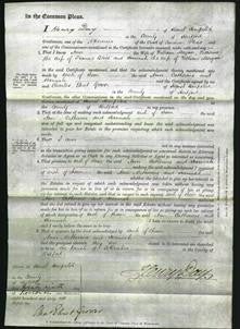 Court of Common Pleas - Ann Morgan, Catherine Bliss, Hannah Morgan-Original Ancestry
