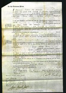 Court of Common Pleas - Mary Ann Snelson-Original Ancestry