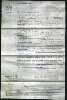 Court of Common Pleas - Emma Mary Stimpson 32-Original Ancestry