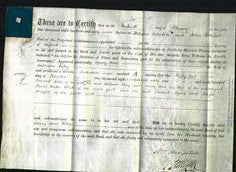 Deed by Married Women - Mary Ann Riley-Original Ancestry