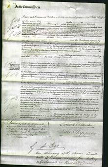 Court of Common Pleas - Mary Wiseman-Original Ancestry