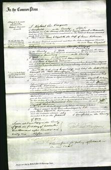 Court of Commonn Pleas - Jane Elizabeth Robinson-Original Ancestry