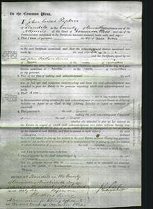Court of Common Pleas - Georgina Trothers-Original Ancestry