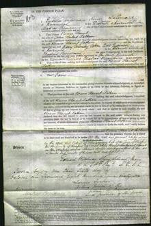 Court of Common Pleas - Rosina Harriet Latham-Original Ancestry