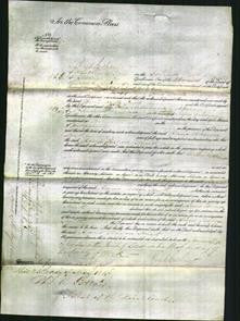 Court of Common Pleas - Anne Teresa Smith-Original Ancestry