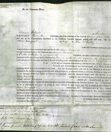 Court of Common Pleas - Alicia Margaret O'Reilly-Original Ancestry