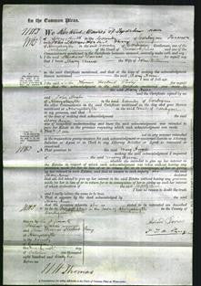 Court of Common Pleas - Mary Anne Williams-Original Ancestry