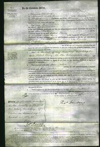 Court of Common Pleas - Ann Deakin-Original Ancestry