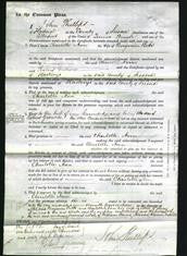 Court of Common Pleas - Charlotte Ann Betts-Original Ancestry