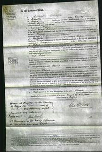 Court of Common Pleas - Maria Simmons-Original Ancestry