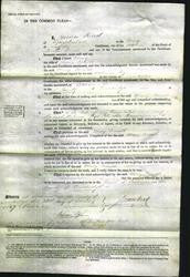 Court of Common Pleas - Mary Cornell-Original Ancestry