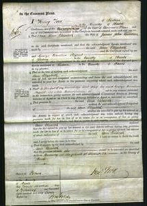 Court of Common Pleas - Ann Elizabeth Couldin-Original Ancestry