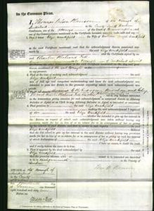Court of Common Pleas - Eliza Woodifield-Original Ancestry