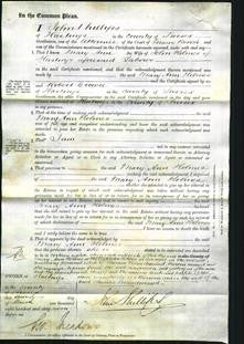 Court of Common Pleas - Mary Ann Holmes-Original Ancestry