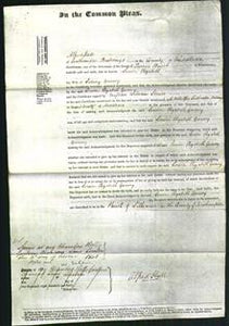 Court of Common Pleas - Louisa Elizabeth Gurney-Original Ancestry