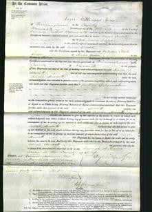 Court of Common Pleas - Anne Hewitt Taylor-Original Ancestry