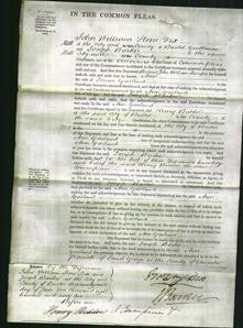 Court of Common Pleas - Ann Garland-Original Ancestry
