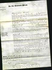 Court of Common Pleas - Ann Martin-Original Ancestry