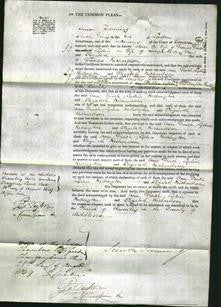 Court of Common Pleas - Ann Finch, Lydia Redington and Elizabeth Richardson-Original Ancestry