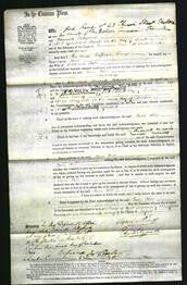 Court of Common Pleas - Jane Hill-Original Ancestry