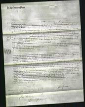 Court of Common Pleas - Eliza Elizabeth Florey-Original Ancestry