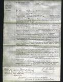 Court of Common Pleas - Mary Pyne-Original Ancestry