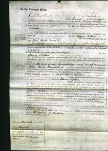 Court of Common Pleas - Clara Sophia Adams-Original Ancestry