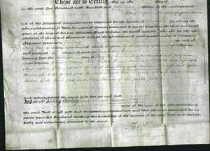 Deed by Married Women - Jemima Ivory-Original Ancestry