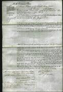 Court of Common Pleas - Emily Bassett-Original Ancestry