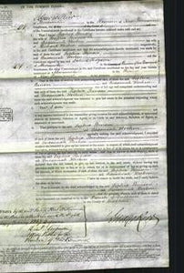Court of common Pleas - Sophia Benson and Sussannah Hocken-Original Ancestry