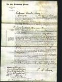 Court of Common Pleas - Mary Gosling-Original Ancestry