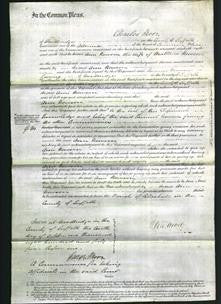 Court of Common Pleas - Ann Newson-Original Ancestry