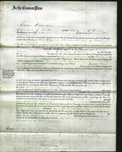 Court of Common Pleas - Ann Elizabeth Thomas-Original Ancestry