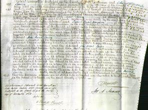 Court of Common Pleas - Ann Swift-Original Ancestry