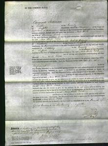 Court of Common Pleas - Ann Hill Fitch-Original Ancestry