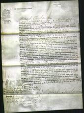 Court of Common Pleas - Charlotte Campbell-Original Ancestry