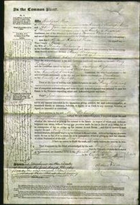 Court of Common Pleas - Mary Pickering-Original Ancestry