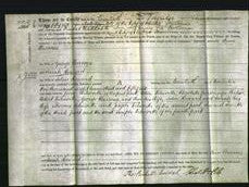 Deed by Married Women - Ann Burrows and Sarah Howard-Original Ancestry
