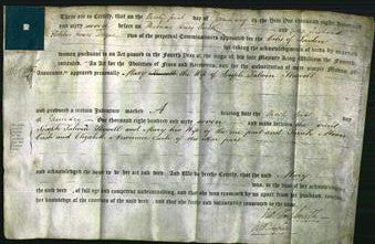 Deed by Married Women - Mary Shewell-Original Ancestry