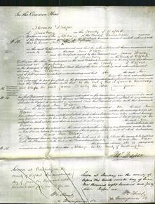 Court of Common Pleas - Ann Wilson-Original Ancestry