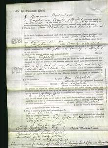 Court of Common Pleas - Ann Elizabeth Jones-Original Ancestry