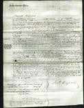 Court of Common Pleas - Mary Gall, Elizabeth Gall-Original Ancestry