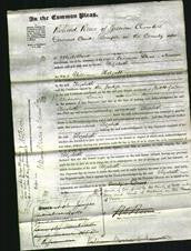Court of Common Pleas - Elizabeth Holgate-Original Ancestry