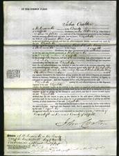 Court of Common Pleas - Elizabeth Haselup-Original Ancestry
