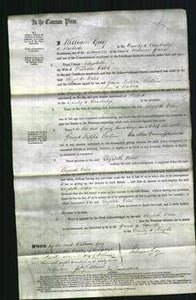 Court of Common Pleas - Elizabeth Wiles #2-Original Ancestry
