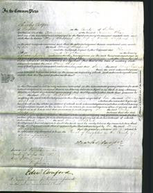 Court of Common Pleas - Mary Sheppard-Original Ancestry
