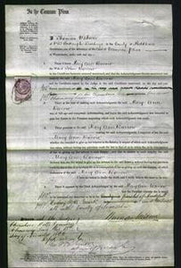 Court of Common Pleas - Mary Ann Barrow-Original Ancestry